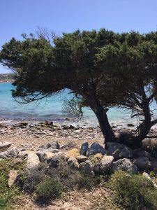Ritiro Yoga Meditazione Carloforte Sardegna